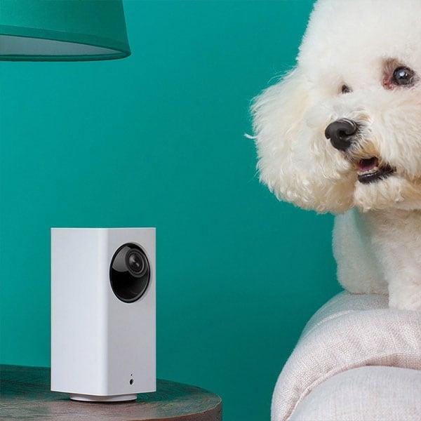 Camera an ninh 360 độ cho gia đình Xiaomi BF3 1080P